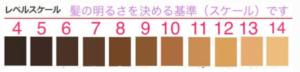 日本ヘアカラー協会 ヘアカラーリング・レベルスケール