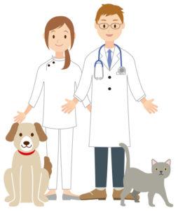 動物薬剤師の求人は高年収?実際に求人を見てみよう